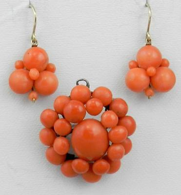 VICTORIAN Antique 14K Gold & Silver Genuine CORAL EARRINGS & PIN / PENDANT