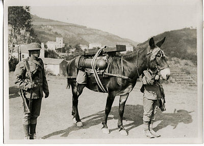 World War One Ww1 Original Photo - At The Trench Mortar School  Italy