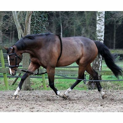 Horka Equine 8 Metre Soft Rein Pony Cob Full Durable Training Aid Lunging Rope