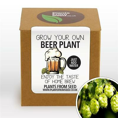 Plants From Seed - Grow Your Own Beer Hops Plant Kit