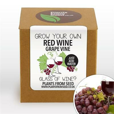Plants From Seed - Grow Your Own Red Grape Vine Kit
