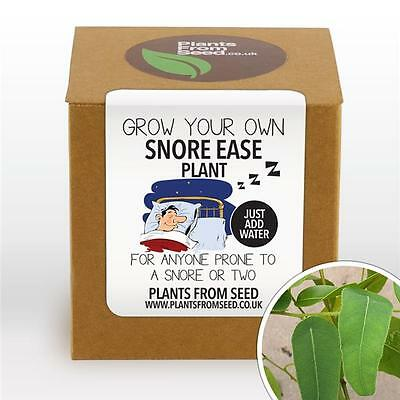 Plants From Seed - Grow Your Own Snore Ease Plant Kit