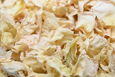 Natural Real Dried Petal Biodegradable Wedding Confetti Ivory 1 Litre