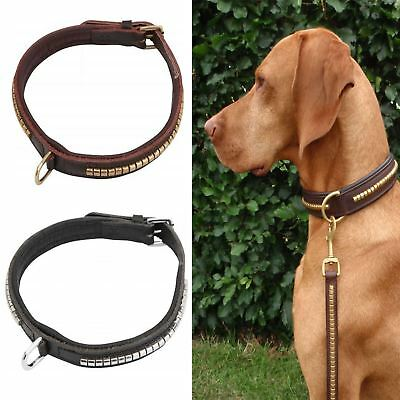 Horka Leather Dog Collar Adjustable Neck Buckle D Ring Strong Smooth Halter