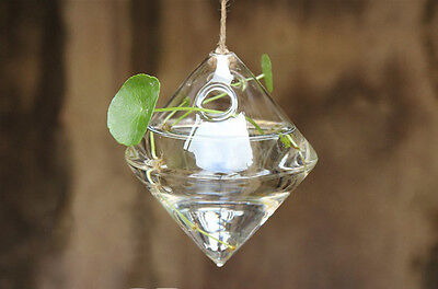 Hanging Ball Glass Flower Planter Vase Terrarium Container Bottle Home Decor