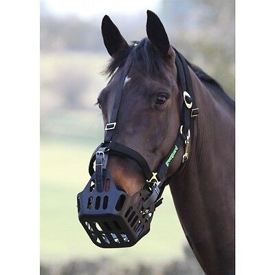 shires greenguard grazing muzzle