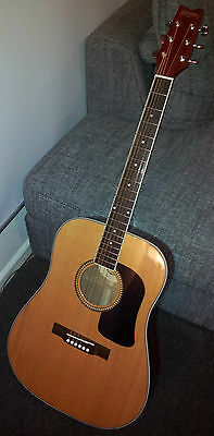 Washburn D10S Acoustic Guitar with Solid Spruce Top