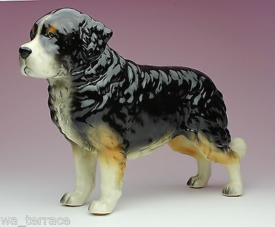 Bernese Mountain Dog Berner Sennenhund Porcelain Figurine Statue Japan New