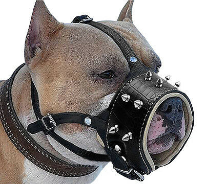 NO Biting Barking Cool Spiked Studded Leather Dog Muzzle for Pitbull Boxer Staff