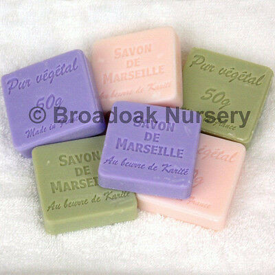 Beautiful SAVON DE MARSEILLE 50g Travel Guest French Soap Natural Vegetable