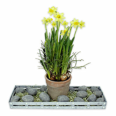 3 Packs grey Dekosteine from weather-resistant Polyfoam for Indoor & Outdoor
