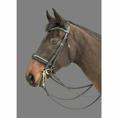 Mountain Horse Donnerwetter Padded Curve Browband Leather Noseband Multi Bridle