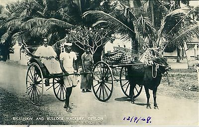 POSTCARD  CEYLON  Rickshaw and Bullock Hackery  RP