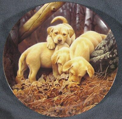 WHERE'D HE GO? Collector Plate Sixth Dog Days Jerry Gadamus Puppies Dogs Crack
