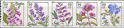 Garden Herbs PNC5 Plate # V11111 5 MNH Stamps Scotts 4513 to 4517 or 4517a  (s2)