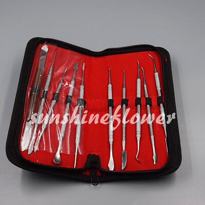 10 Pcs/Set Stainless Steel Dental Lab Teeth Wax Carving Tools Kit Sculpture