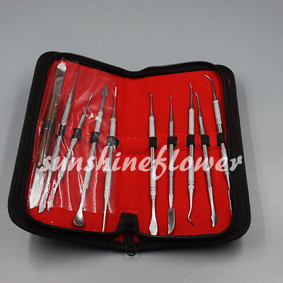 10PCS/set Stainless Steel Dentist Teeth Wax Carving Tools Instrument Kit US