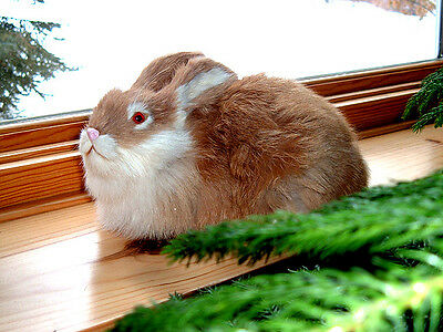 Realistic EASTER BUNNY RABBIT FUR Taxidermy REPLICA Prop 1828t FREE SHIPPING USA