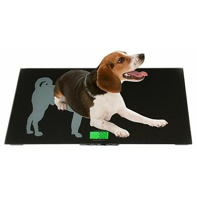 Veterinary Scale 330lb x 0.1lb Tree LC-VS 300 Livestock Floor Animal Pet Vet