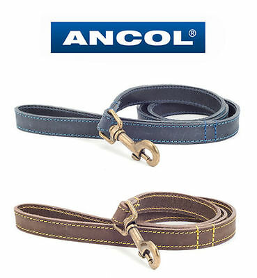 ** CLEARANCE SALE**ANCOL / TIMBERWOLF LEATHER DOG LEAD (Sable/Brown or Blue)