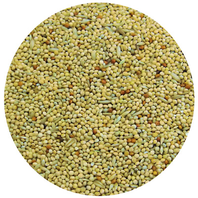 Classic Menu Premium Budgie Seed Food Budgerigar Mix Feed Millet Mixture ✔