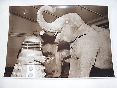 PUBLICITY DR WHO PHOTOGRAPH BLACK & WHITE DALEK'S MEETING ELEPHANTS 11 x 8 INCHE