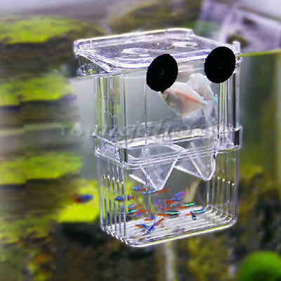 Aquarium Fish Breeding Tank Fry Trap Hatchery Floating Box Nursery Hot Sale