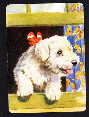 WIDE Swap/Playing Card - Cute Puppy Looking  Out Window