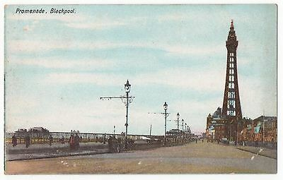 POSTCARD BLACKPOOL  The Promenade