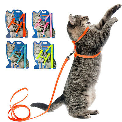 Nylon Cat Harness & Lead Set Kitten Small Dog Strap Belt Harness 4 Colors