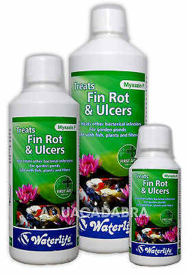 Waterlife Myxazin P Treats Fin Rot & Ulcers Anti Bacterial Pond Treatment Fish
