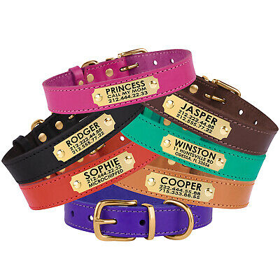 Leather Dog Collar Personalized Nameplate Brass Buckle Red Brown Black Green S L