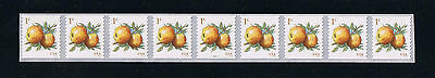 US Sc #5037 2016 Apples Plate Number Strip of 9 Postage Stamp