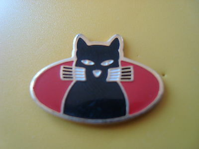 pin pins animaux chat cat