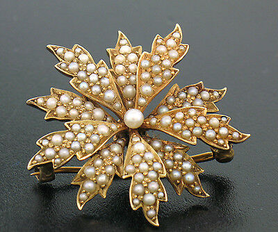 Antique 14K Solid Yellow Gold Layered Flower Burst Seed Pearl Brooch Pendant