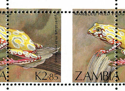 Zambia 1989 Marbled Tree Frog selvedge block 10 with SPECTACULAR MISPERF ERROR