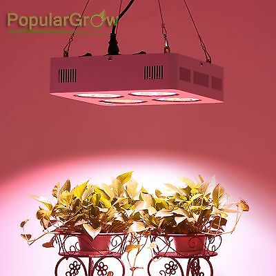 PopularGrow COB 800W LED Grow Light Full Spectrum with 90° Reflector&Daisy-chain