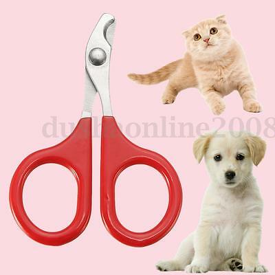 Outil Pro Pince Coupe Ongles Nail Griffes Animaux Favori Chien Chat Toilettage