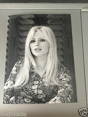 ANNE-MARIE NEBOT - PHOTO DE PRESSE ORIGINALE 24x18 cm
