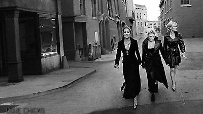 Dixie Chicks 11x17 Picture Poster Print Gloss thick card stock paper. #6