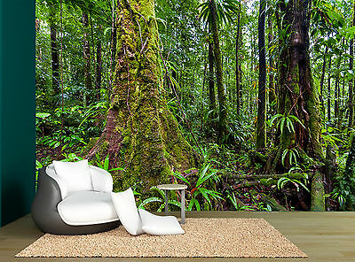 Plants Forest Trees Green Tropical Wall Mural Photo Wallpaper GIANT WALL DECOR