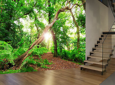 Forest Trees Nature Plant Green Wall Mural Photo Wallpaper GIANT WALL DECOR