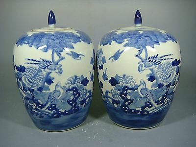 Beautiful chinese blue and white porcelain of pots