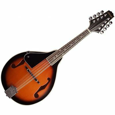 Stagg M20 Bluegrass Mandolin