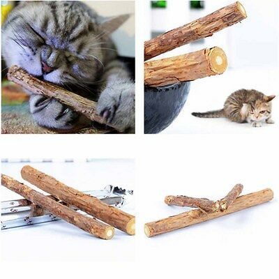 Wood Cleaning Teeth Cat Natural Catnip Cat Snacks Pure Cute Toothpaste Stick