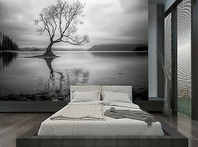 Black And White Nature Tree Lake Wall Mural Photo Wallpaper GIANT WALL DECOR