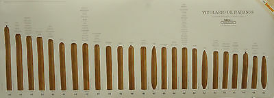 Cigar Size Guide Poster - Habanos Vitolas  Spanish Version