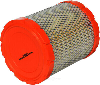 Air Filter-Extra Guard FRAM CA11048