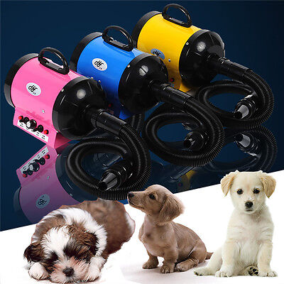 2800W Dog Cat Hairdryer Pet Grooming Fur Hair Dryer Heater Blaster Blower NEW
