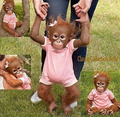 "Ashton Drake""ANNABELLES HUGS""- LIFELIKE 22"" BABY MONKEY DOLL- NEW-IN STOCK NOW !"